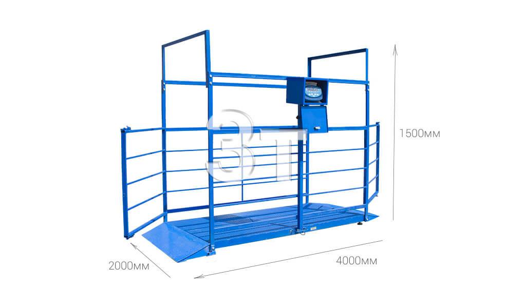 Весы для группового взвешивания животных на 3000 кг 4000*2000*1500мм